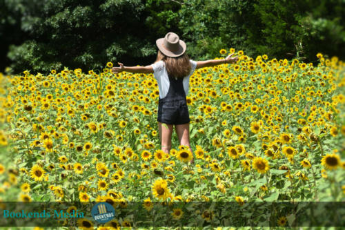 Sunflower Field - Senior Picture Photo Shoot